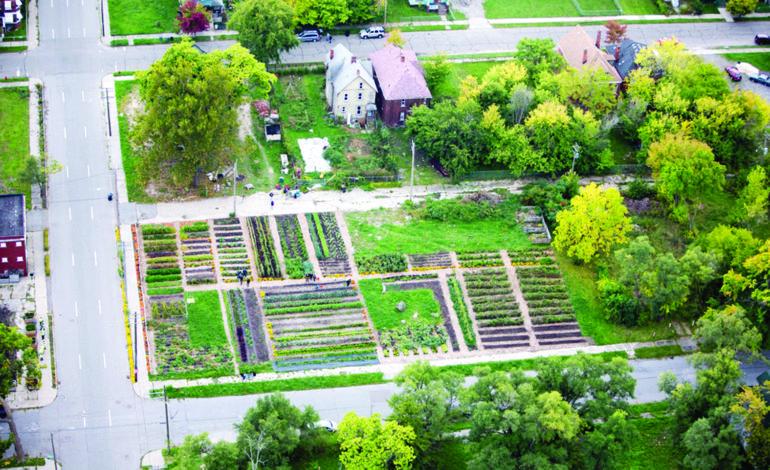 بيع عشرة آلاف قطعة أرض شاغرة في ديترويت منذ ٢٠١٤
