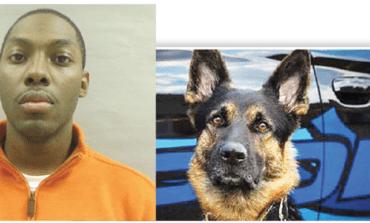 قتل كلب الشرطة .. فقتلوه!