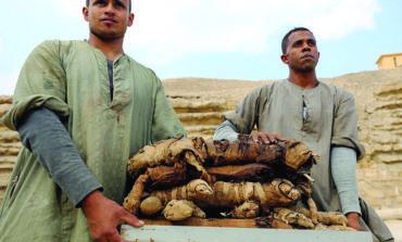 كشف أثري جديد في مصر
