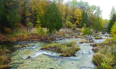 شواطئ مطلّة على بحيرات .. وضفاف أنهار وغابات للبيع في ميشيغن
