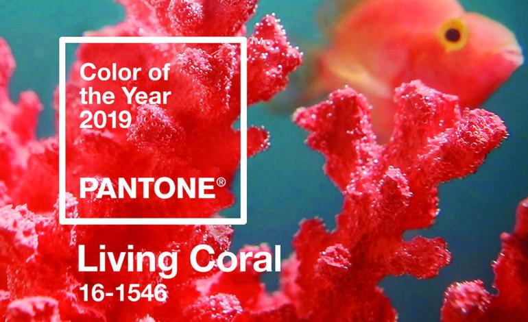 تعرّف على لون العام 2019!