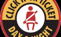حملة وطنية  لربط حزام الأمان