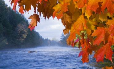 كيف يستمتع سكان ميشيغن بفصل الخريف؟