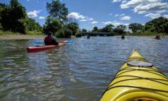 مصلحة المياه تنجح في تعقيم نهر الروج .. بكلفة أقل من المتوقع