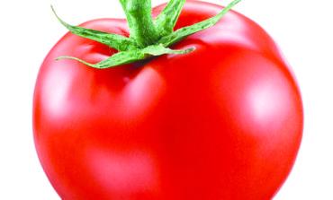 الطماطم تحسن الخصوبة عند الرجال