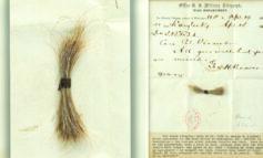 بيع خصلة شعر لإبراهام لينكون بـ81 ألف دولار