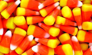 ما هي الحلوى المفضلة لدى سكان ميشيغن في الهالوين؟
