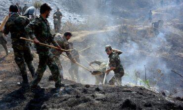 الحرائق تلتهم مساحات شاسعة في سوريا: افتعال أم إهمال أم تغيّر مناخي؟