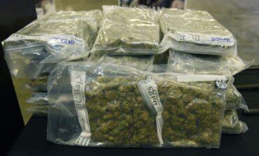 ضبط كميات غير مسبوقة من المخدرات والأسلحة عند المنافذ الدولية في ميشيغن