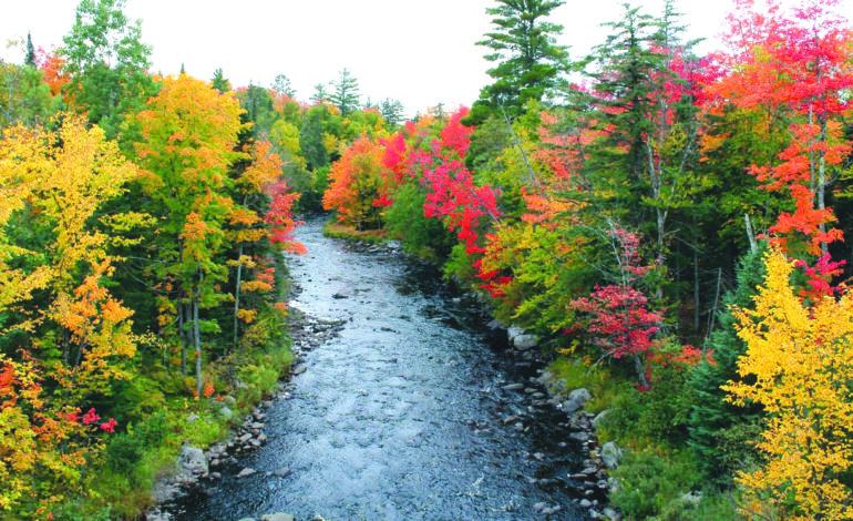 عشاق الطبيعة في ميشيغن .. على موعد مع ألوان الخريف